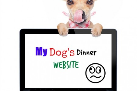 How to avoid a Dog's Dinner website